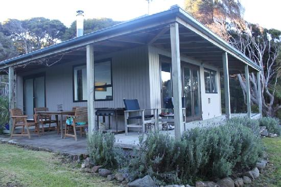 Great Barrier Island, Νέα Ζηλανδία: Bay lodge gorgeous gardens
