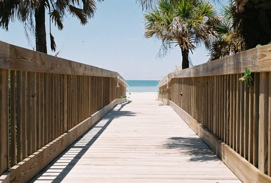 เวนิส, ฟลอริด้า: Venice Florida Beach Is A Great Place To Visit