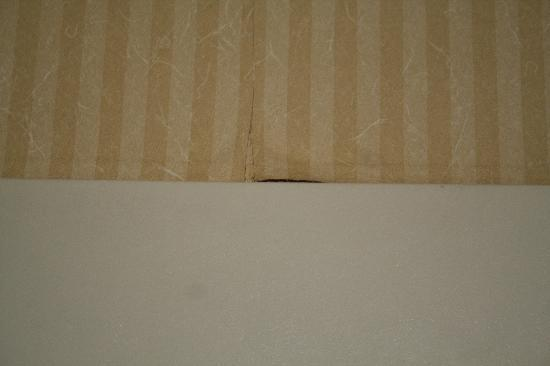 Comfort Inn & Suites Alexandria: Peeling wallpaper in the shower
