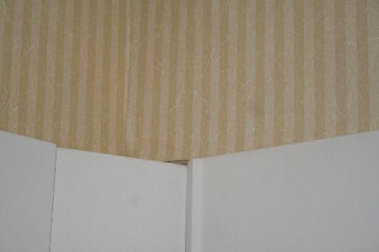 Comfort Inn & Suites Alexandria: More peeling wallpaper in the shower
