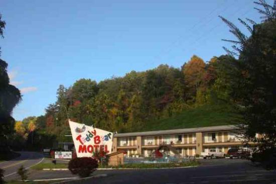 Photo of Teddy Bear Motel & Restaurant Whittier