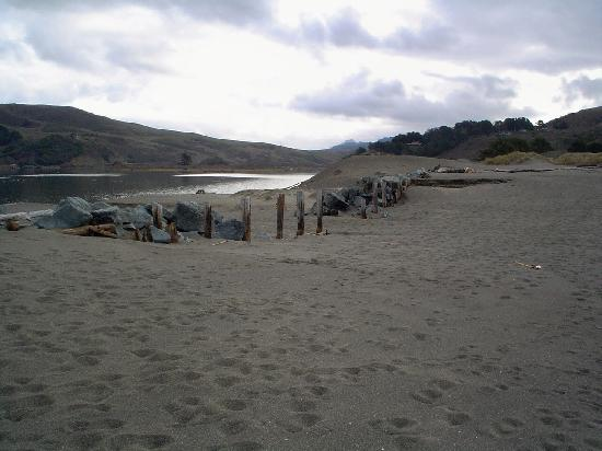 Goat Rock Beach in Jenner is where the Russian River meets the Pacific.