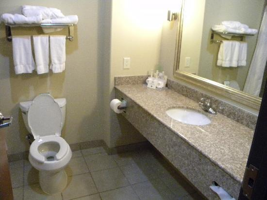 Holiday Inn Express Hotel & Suites Pecos: Rest room