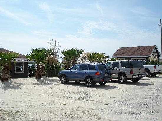 Snug Harbor Marina and Cottages: Snug Harbor Palms