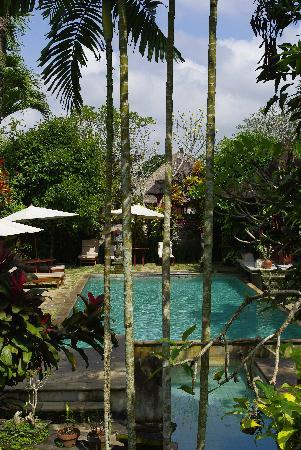 Alam Jiwa: Pool view