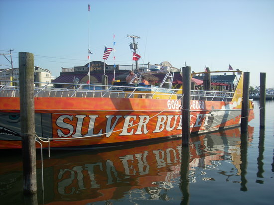Silver Bullet Dolphin And Sightseeing Tours Wildwood Nj