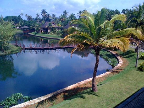 The Zuri Kumarakom: View from our room