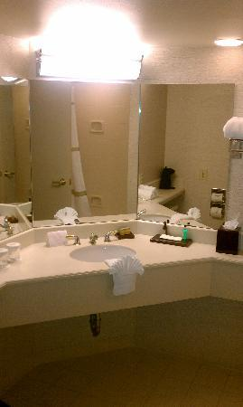 Dallas Marriott Las Colinas: Bathroom