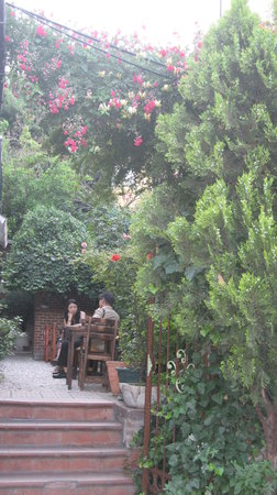 Bonjour Guesthouse: our garden with roses and flowers