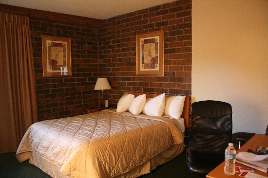 Ramada Inn and Suites Glenwood Springs: Clean and comfortable room