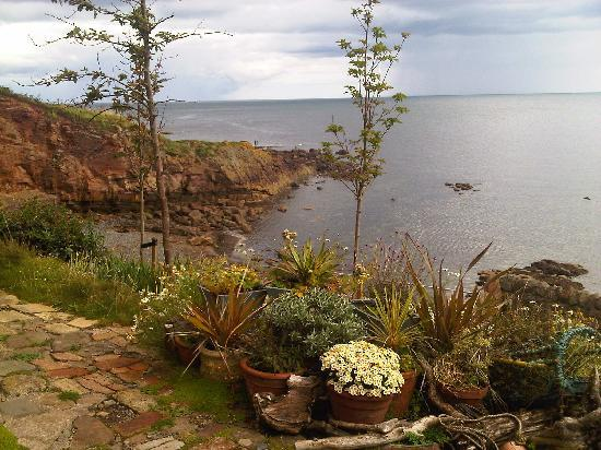 Brownlees Guest House: The view from the nearby Crail Tea Shop