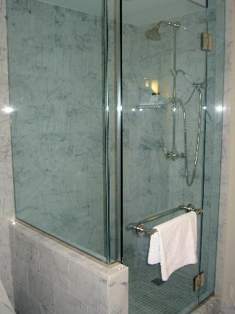 The Surrey: Shower- room 1107 -Grand Deluxe Salon