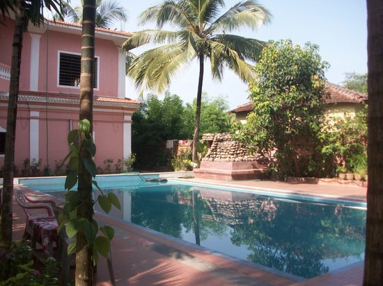 Anjuna, Hindistan: Pool at Poonam