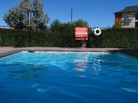 Quality Inn & Suites: Clean pool, but cold water!