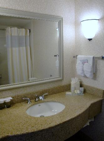 Hilton Garden Inn Albuquerque Airport: Bathroom