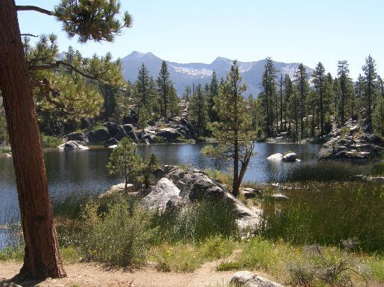 Mono hot springs resort ca campground reviews for Cabin rentals near hiking trails