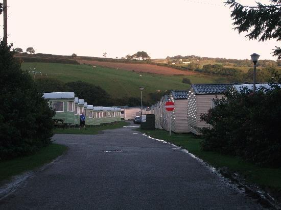 The Vans Picture Of Parkdean Looe Bay Holiday Park Looe Tripadvisor