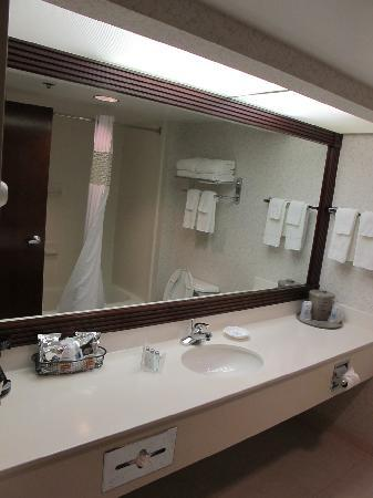 Hampton Inn Columbus Airport: bathroom