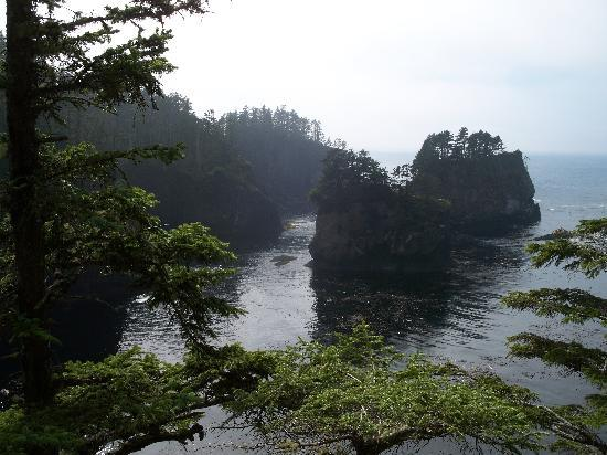 Curley&#39;s Resort and Dive Center: Cape Flattery