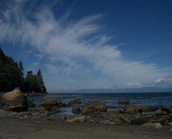 Curley&#39;s Resort and Dive Center: Beach between Sekiu an Neah Bay. Awesome at low tide.