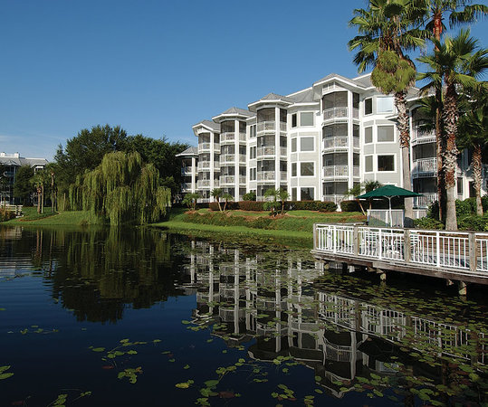 Marriott&#39;s Cypress Harbour: Live oaks grace our resorts picturesque landscape, and cottage-style architecture lends to its 