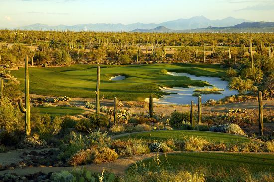 Tucson, AZ: Take your best shot on a challenging desert golf course, or enjoy a more traditional links-style