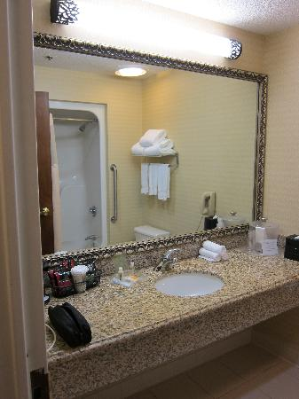 Holiday Inn Rockland: Bathroom - sink