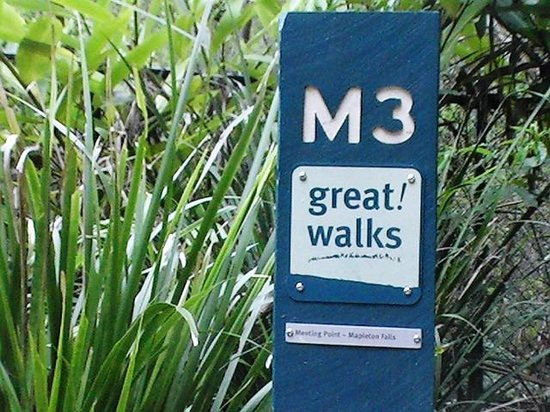 Mapleton Falls Accommodation: Great Walks at your doorstep