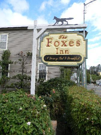 The Foxes Inn!