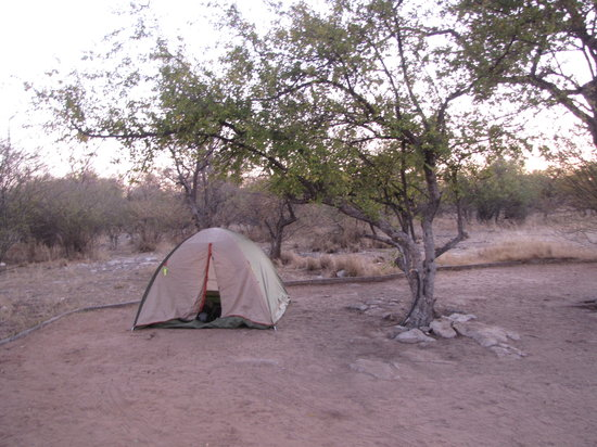 ‪Thakadu Bush Camp‬