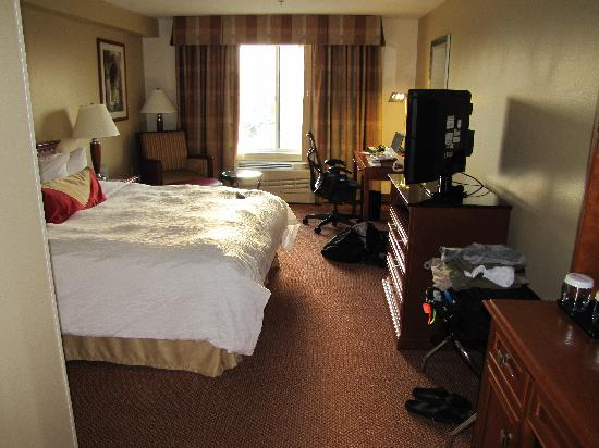 Hilton Garden Inn Anchorage: Room