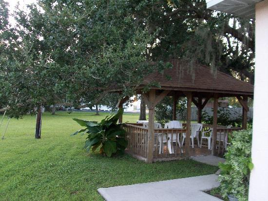 Safety Harbor, FL: gazebo/ picnic area