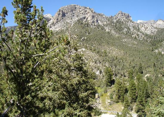 Mt. Charleston Lodge: view from our back porch