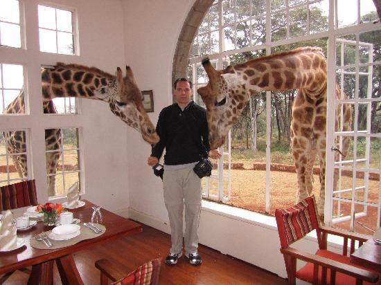 Breakfast time at Giraffe Manor - Picture of Giraffe Manor