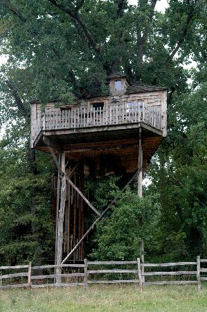 Monmarves, Frankrike: The smaller tree house
