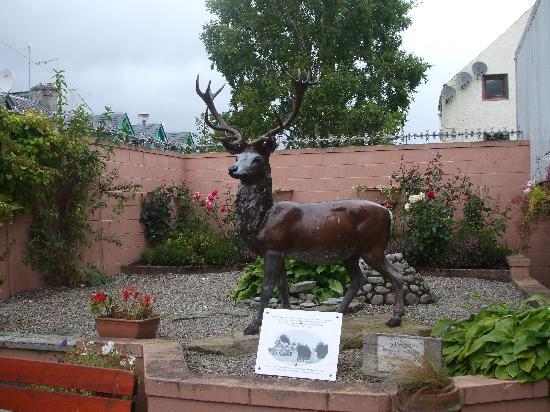 Stag statue behind the museum dingwall