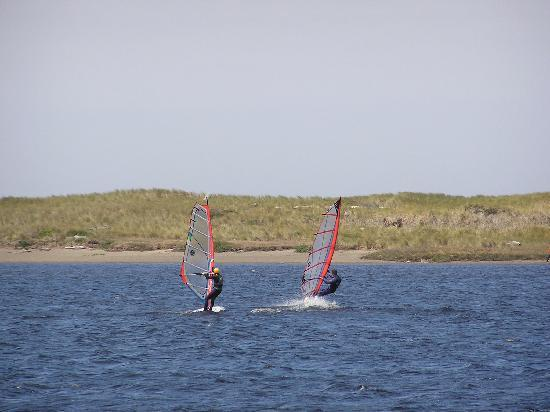 Floras Lake House Bed & Breakfast: Windsurfing of all levels - the wind kicks big time!