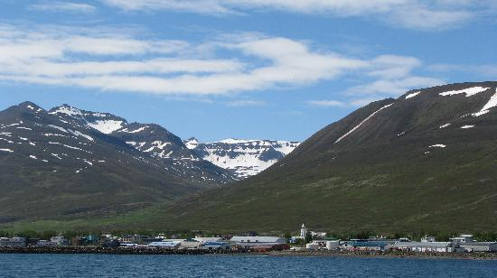 Dalvik attractions