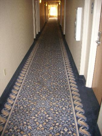 Econo Lodge Lookout Mountain: hallway with stain