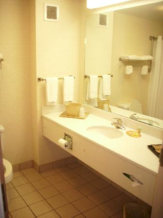 Econo Lodge Lookout Mountain: bathroom with towels of two