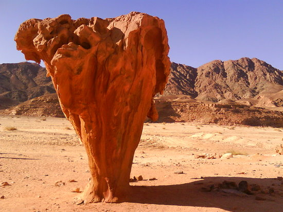 Dahab, Egypt: Mushroom Rock at Sinai