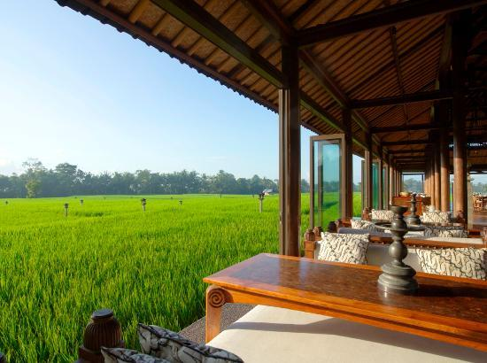 The Chedi Club Tanah Gajah a GHM Hotel: The Chedi Club, Ubud - Club Lounge