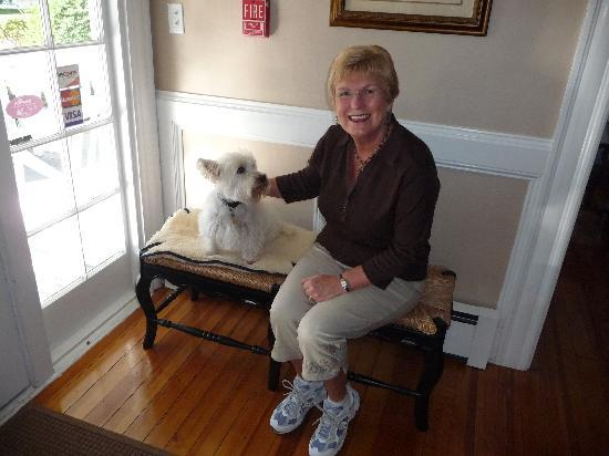 The Victoria Inn: Lincoln....such a sweet Westie!
