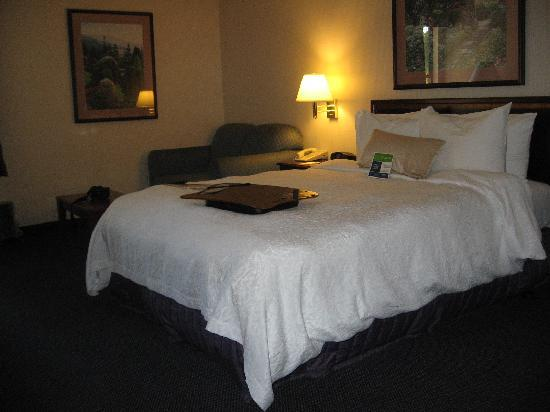 Hampton Inn St. George: Handicap Room has Queen Bed