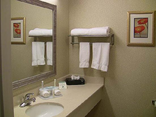 Holiday Inn Express Hotel &amp; Suites Marysville: Holiday Inn bathroom counter