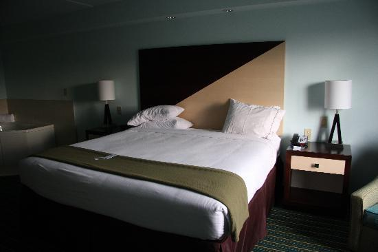 Holiday Inn Express Hotel & Suites Norfolk International Airport: King Size Bed