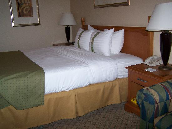 Holiday Inn and Suites Tucson Airport North: room