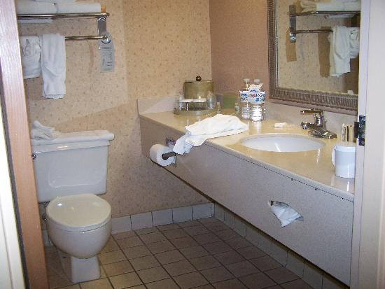 Holiday Inn and Suites Tucson Airport North: bathroom