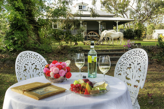 Diamondvale B&B Cottages: Picnic by the banks of Quart Pot Creek in front of the homestead