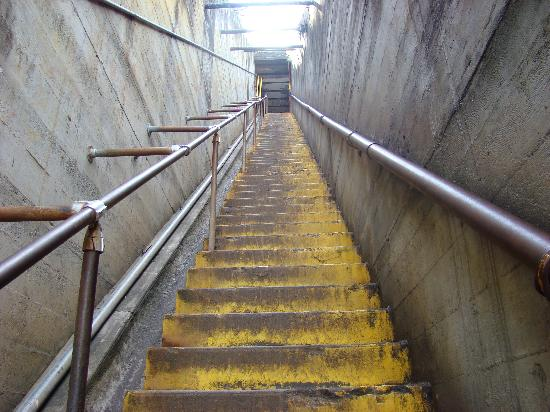 one big flight of stairs picture of diamond head
